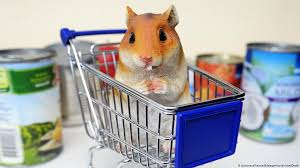 Hamsterkauf